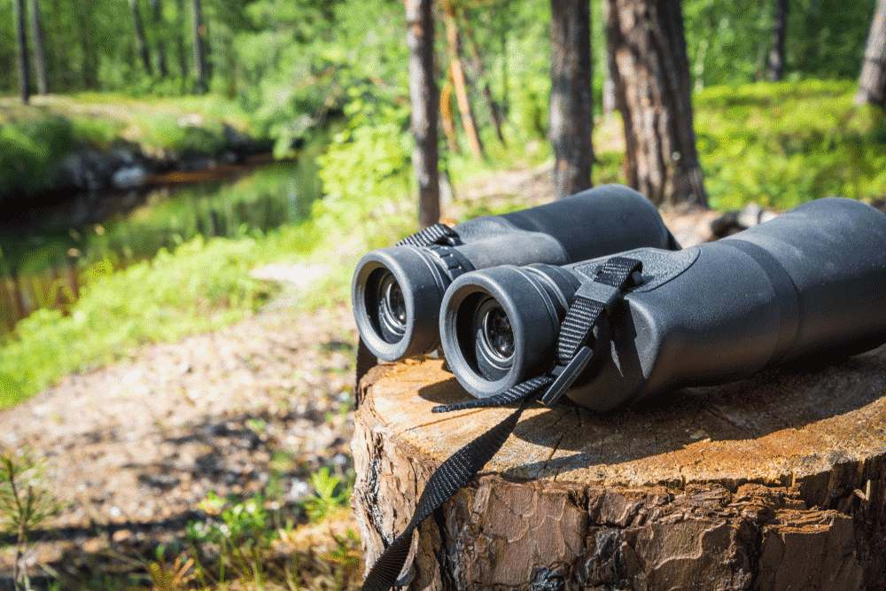 Best Rangefinder Binoculars Reviewed- Top Choices for Hunters, Bird Watchers & Hobbyists