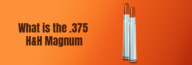 What is the .375 H&H Magnum