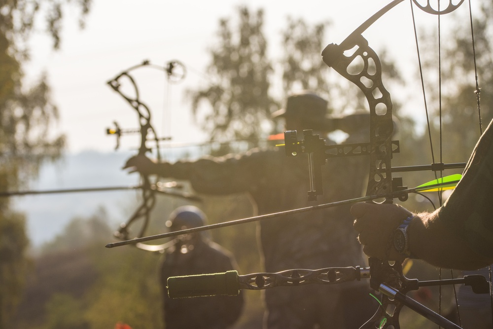 top compound bow