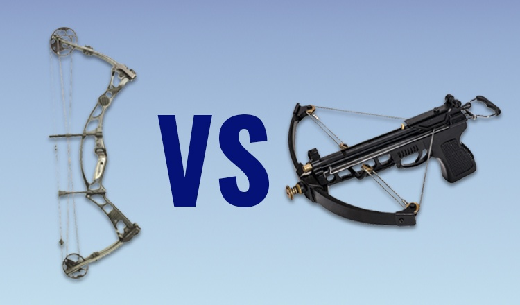 Crossbows vs Compound Bows: A Guide for Beginners