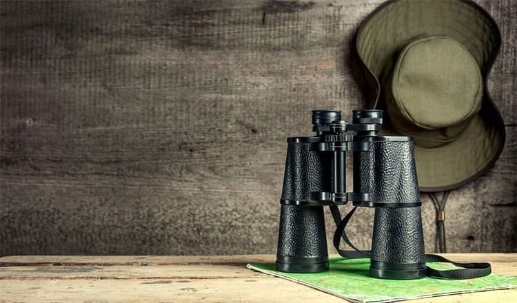 Basics of binocular harness for hunting and bird watching