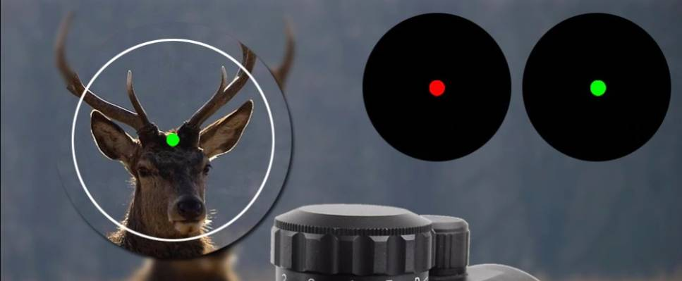 Green Dot vs Red Dot: A Comparison Guide for Beginners