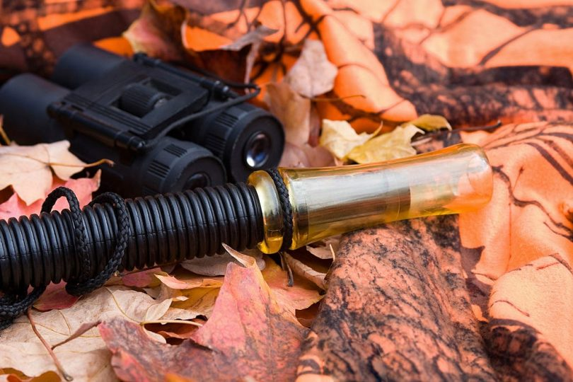 How to use a deer call
