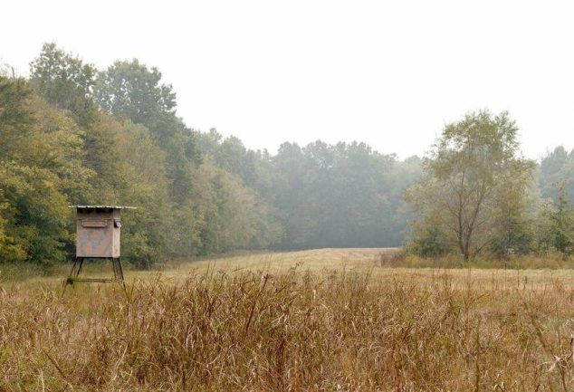 how to build an elevated deer blind