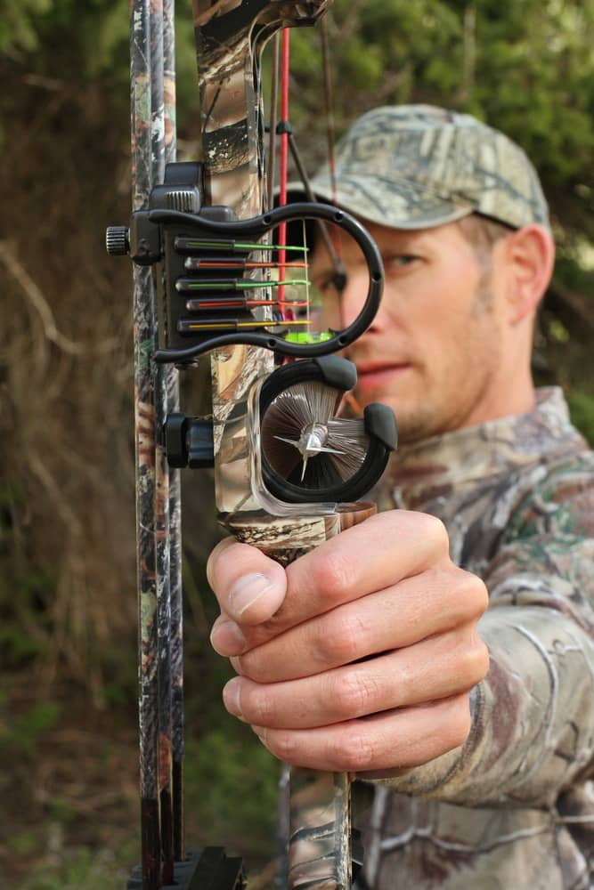 Best Bow Sight - Expert Buying Guide