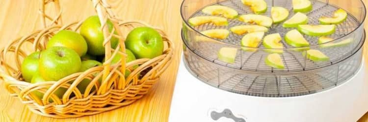 Fruit Trays and Shelves