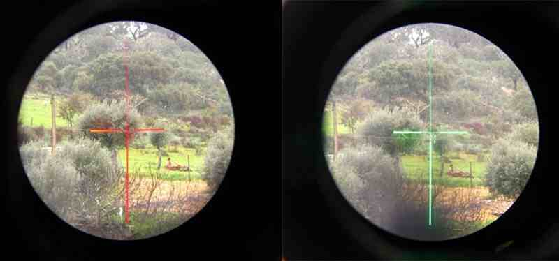 Green Dot vs Red Dot-Which Is Better