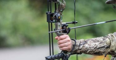 How to Choose a Bow