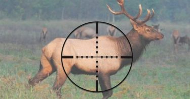 how to use a mil dot scope